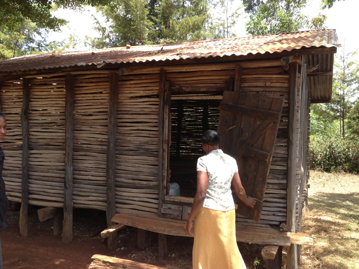 During the baseline study for the Kenyan On-Farm Storage Solutions pilot project, a smallholder farmer shows researchers how she stores grain.